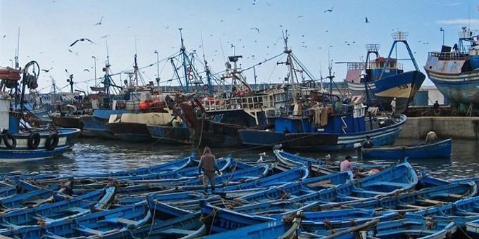 Une situation contrastée pour la pêche côtière