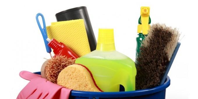 Edito : vers une industrialisation du travail domestique !
